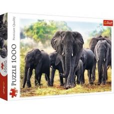 Trefl: Afrikaanse Olifanten 1000 stukjes